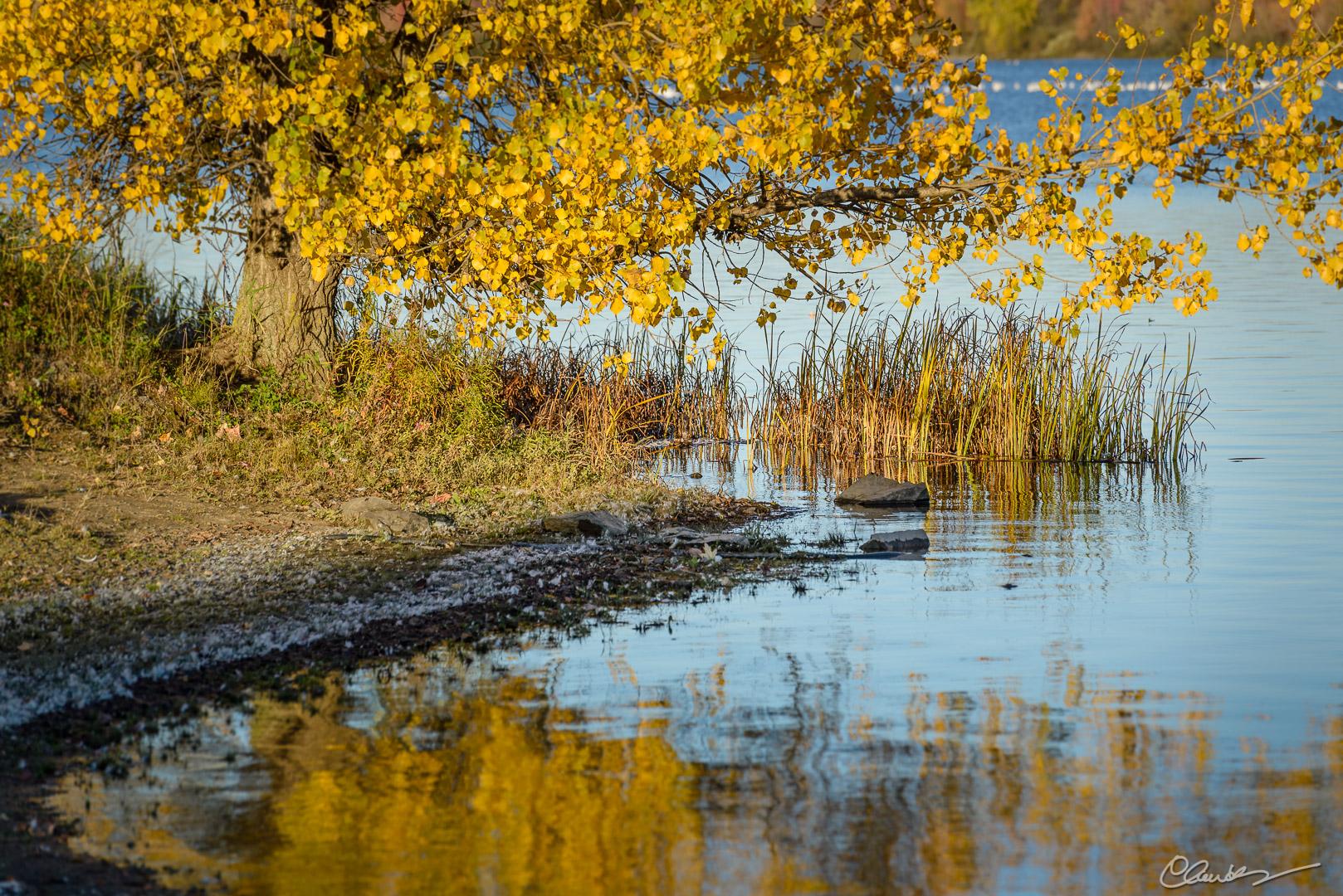 Réservoir Beaudet Reservoir (7)