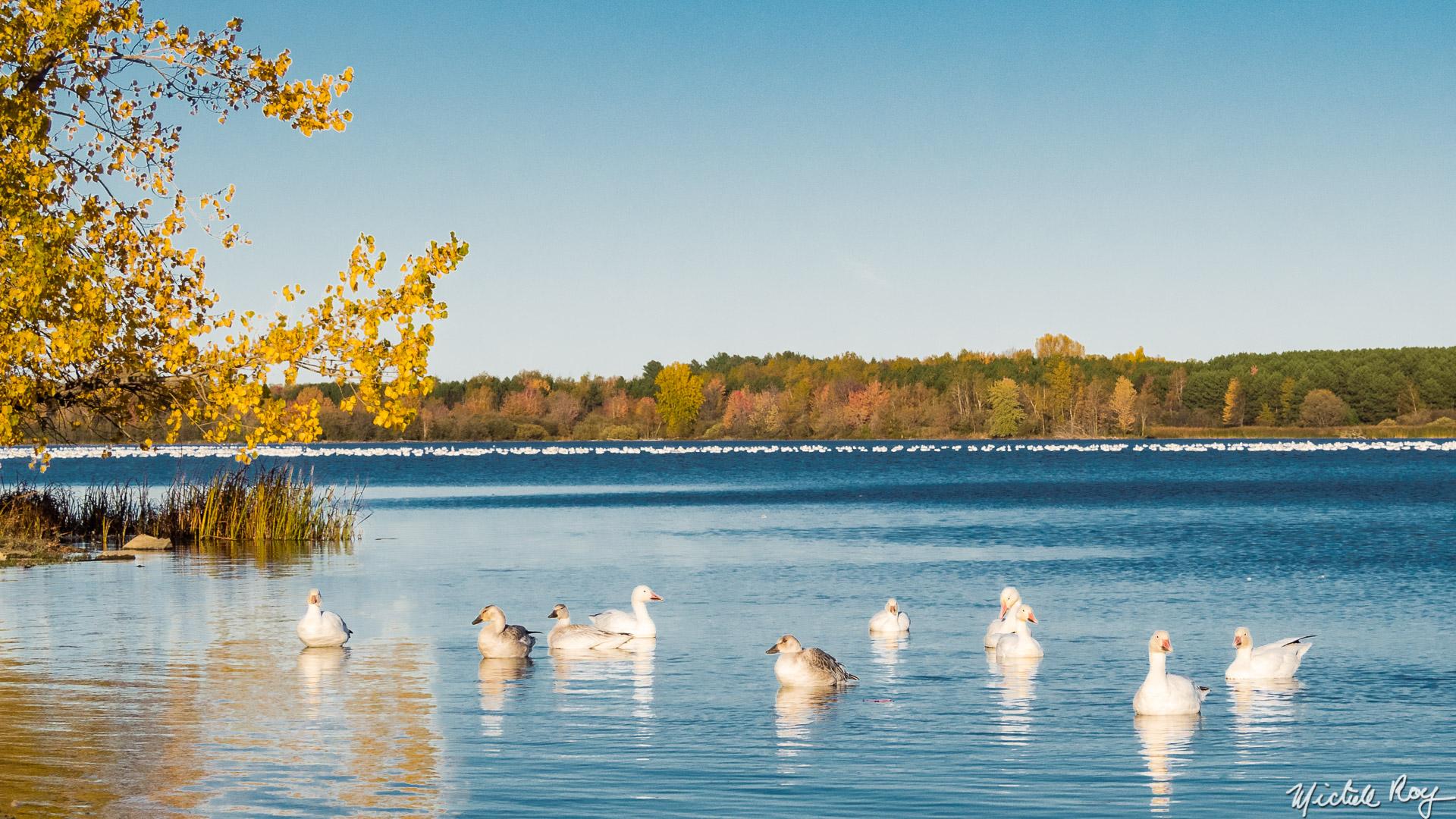 Réservoir Beaudet Reservoir (5)