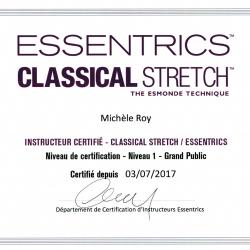 Certification niveau 1