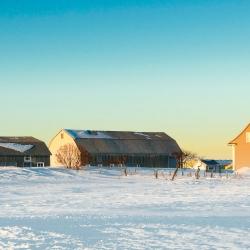 Passage d'hiver 29