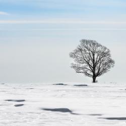 Passage d'hiver 12
