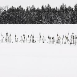 Passage d'hiver 7
