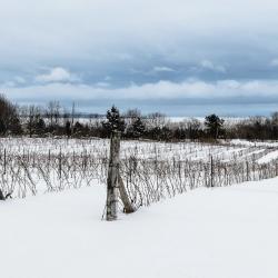 Passage d'hiver 4