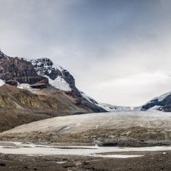 Promenade des champs de glace (Alberta) 5