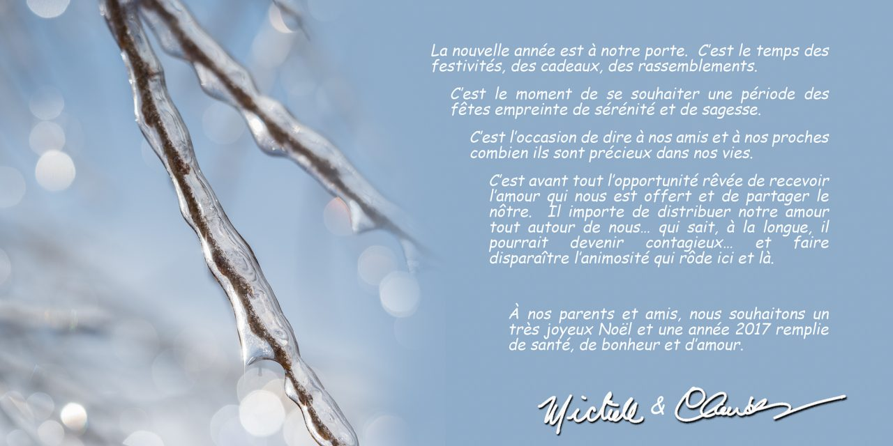 Nos Voeux de Saison / Season's Greetings