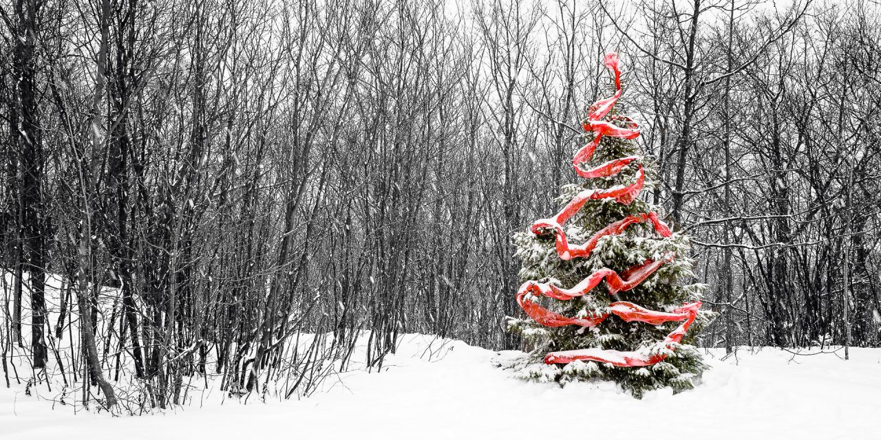Vœux du nouvel an / New Year greetings