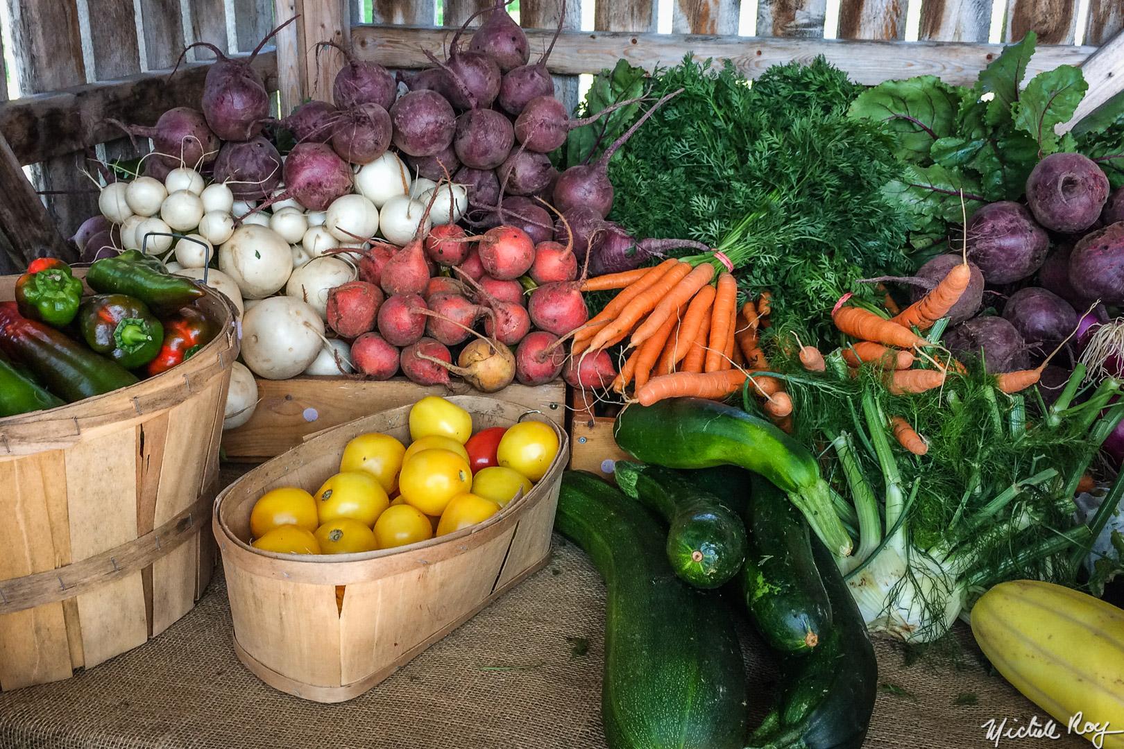 Fraîcheur dans le frigo / Freshness in the fridge