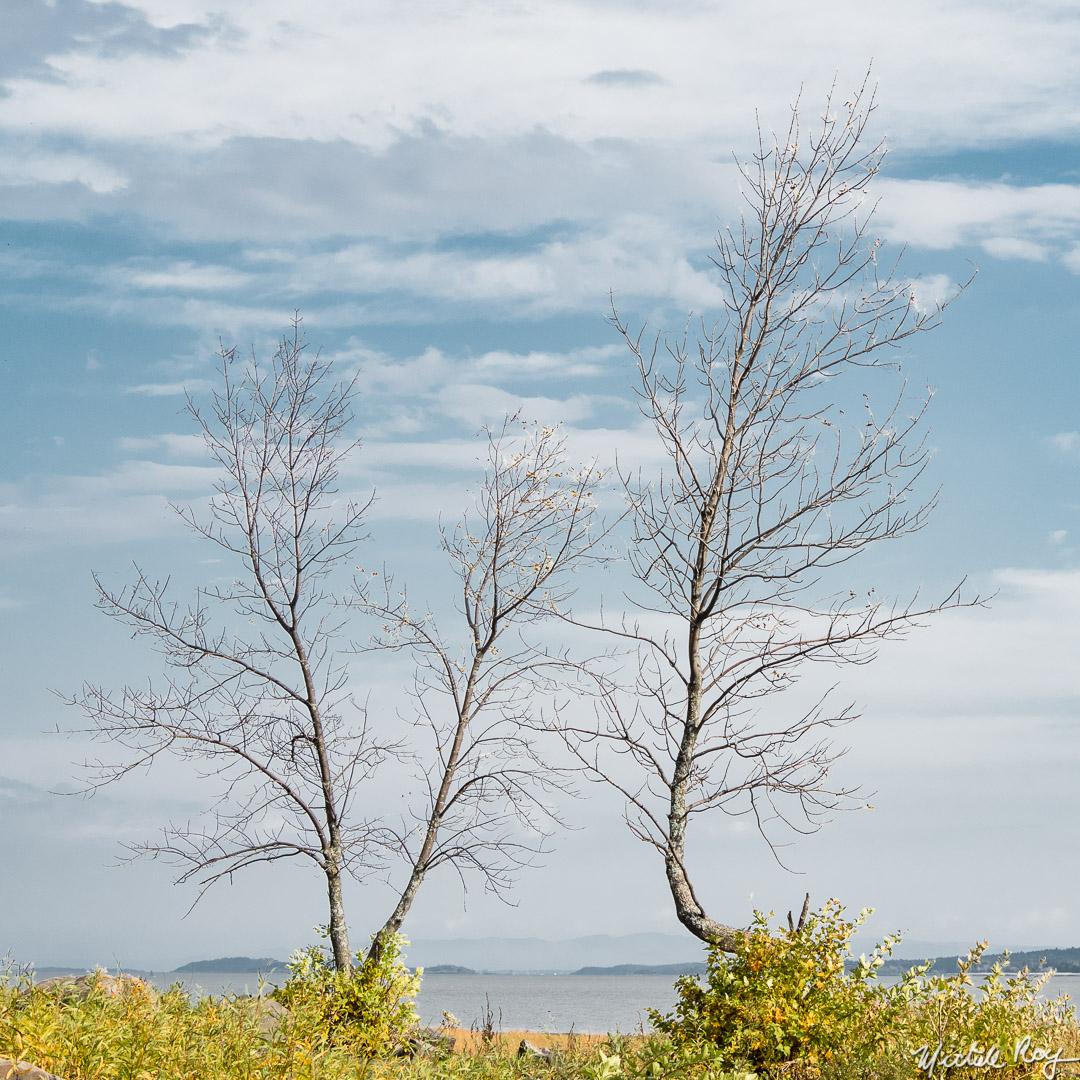 Les deux solitudes / The two solitudes