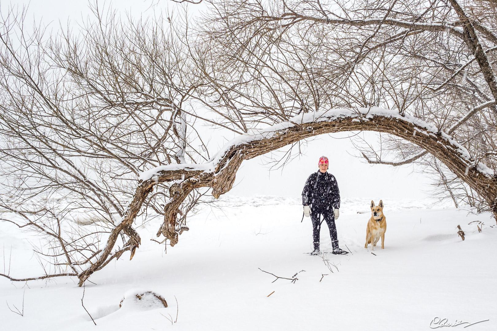 Jour d'hiver / Winter has arrived