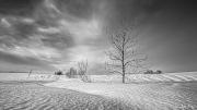 iPhone Paysage/Landscapes 2020 Sélection/Subset - 4